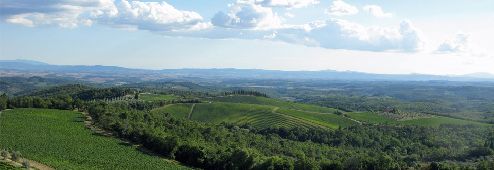Toscana-Chianti-vy-960_332