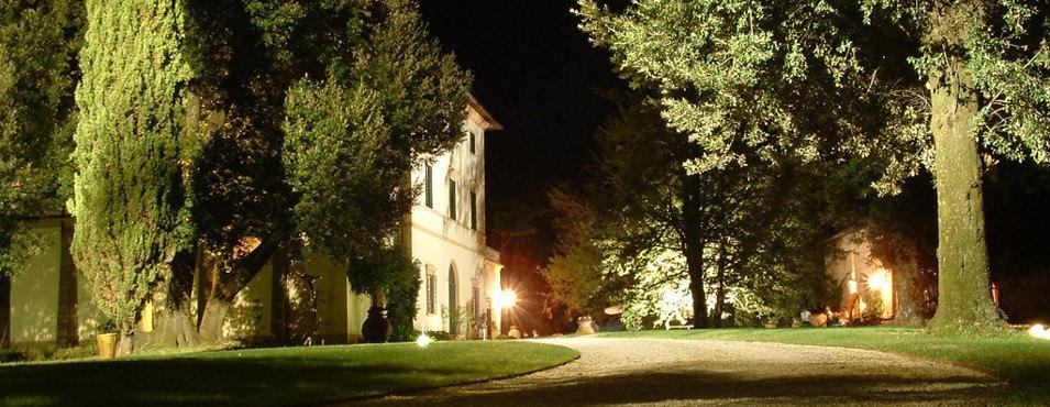 Vacker vingård i Toscana