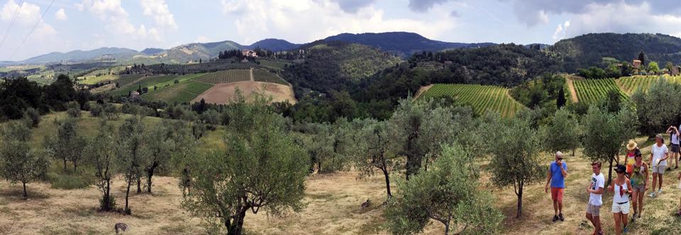 Vinvandring-Vignamaggio-Montagliari-960_332