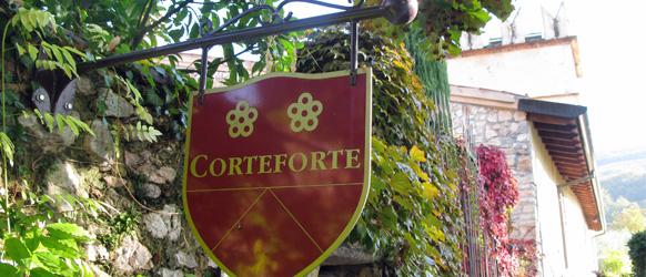 Vingården Corteforte 1