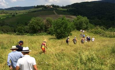 Möten i Toscana vår-höst 2018 – njut av Italien