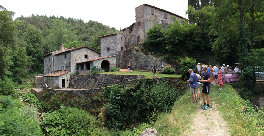 vinvandring Vignamaggio 5