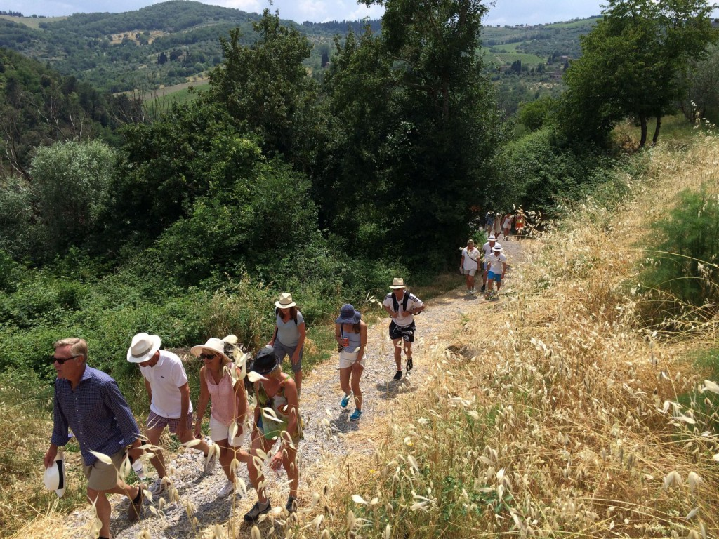 vinvandring Vignamaggio 7